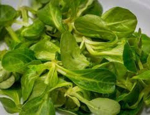 Febbraio: l'insalatona perfetta in pausa pranzo